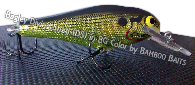 Bagley Diving Shad DS in BG Color