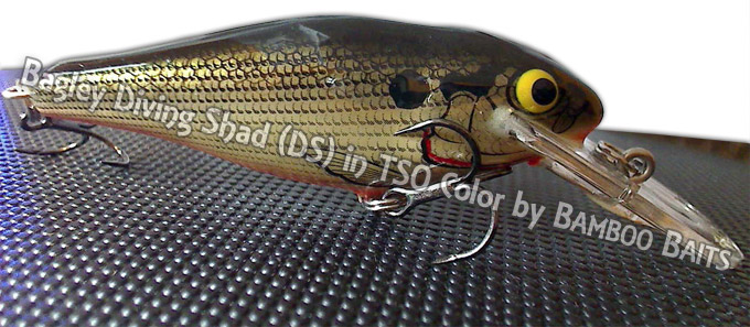 Bagley Diving Shad DS in TSO Color